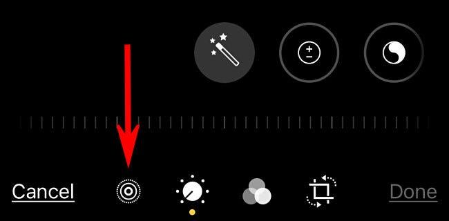 """Toque no botão """"Foto ao vivo"""" na barra de ferramentas."""
