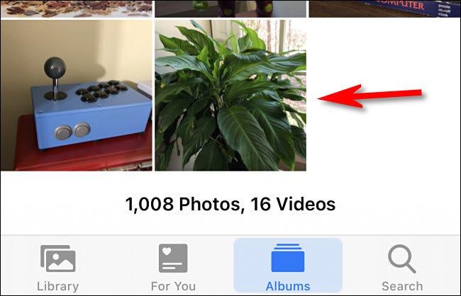 Selecione a Live Photo que deseja editar.